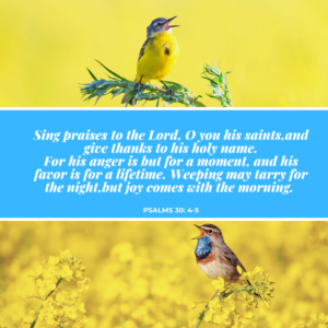 Psalms 30:4-5 Image